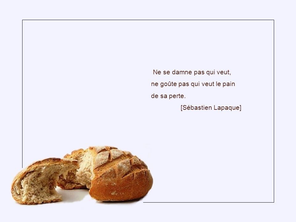 Ne se damne pas qui veut, ne goûte pas qui veut le pain de sa perte. [Sébastien Lapaque]